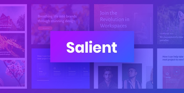 Nulled Salient v13.0.5 - Responsive Multi-Purpose Theme